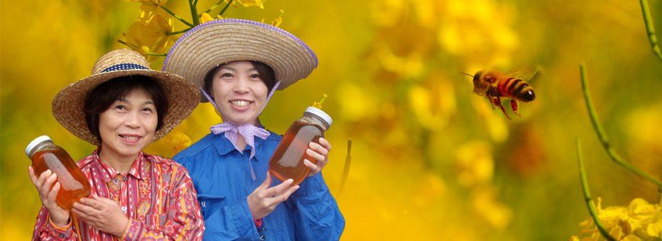 ミツバチからの贈り物